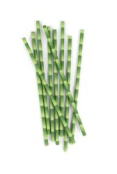 1403204946-a-bamboo paper straws